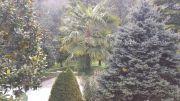 FontanaVecchiaAtina-parco